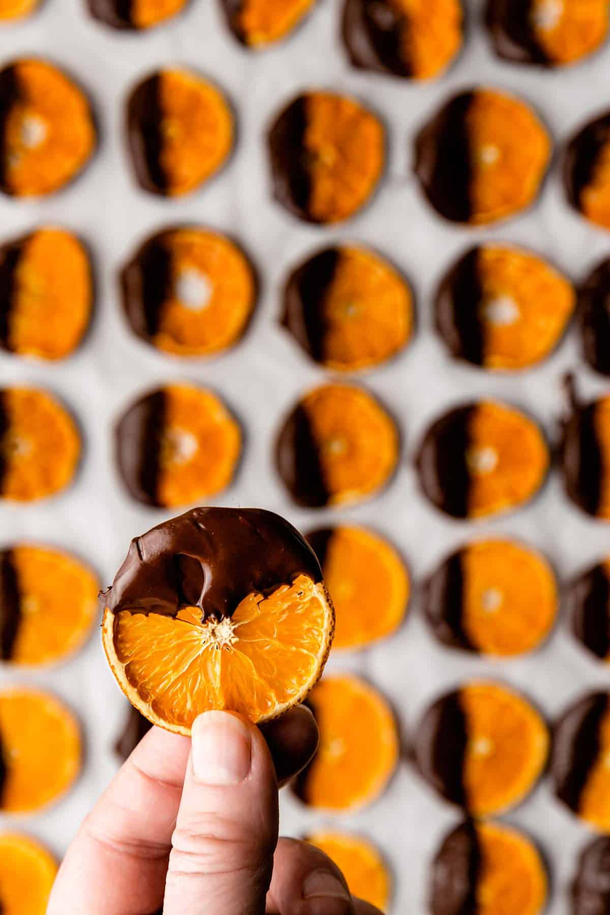 Easy Chocolate-Dipped Dried Satsuma Slices - the recipe makes a lot!