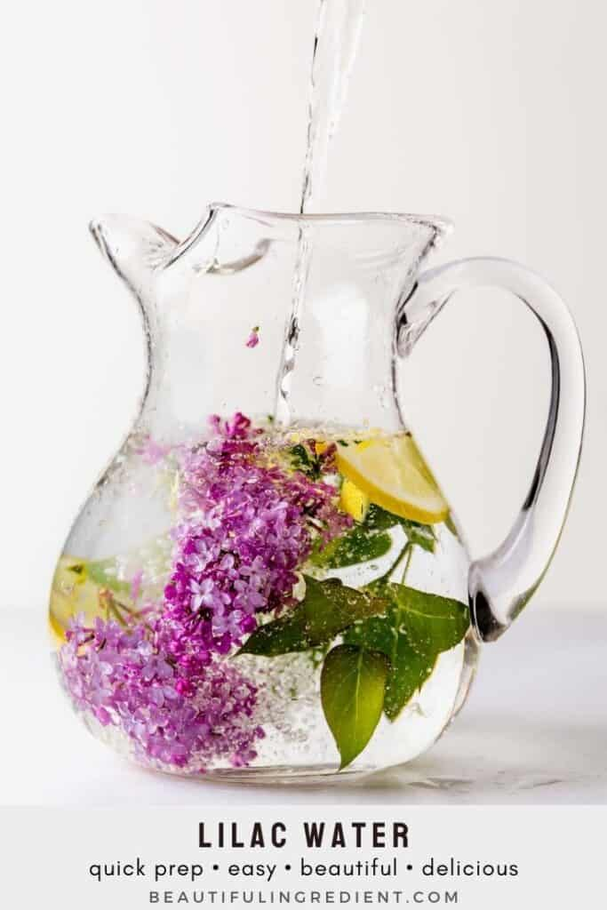 Lilacs and lemon slices floating in a water pitcher
